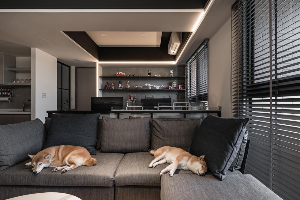 大毅讚幸福,豐骨設計,空間攝影,室內完工拍攝,三川二目,台中,住家拍攝,柴犬,公仔,現代工業風
